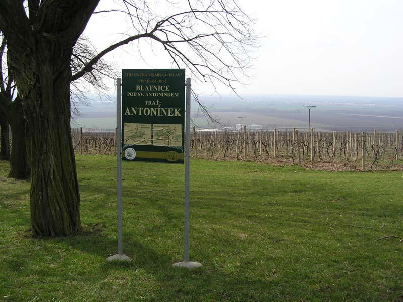 """Winnica """"Antonínek"""" w Blatnicy pod św. Antoninkiem"""