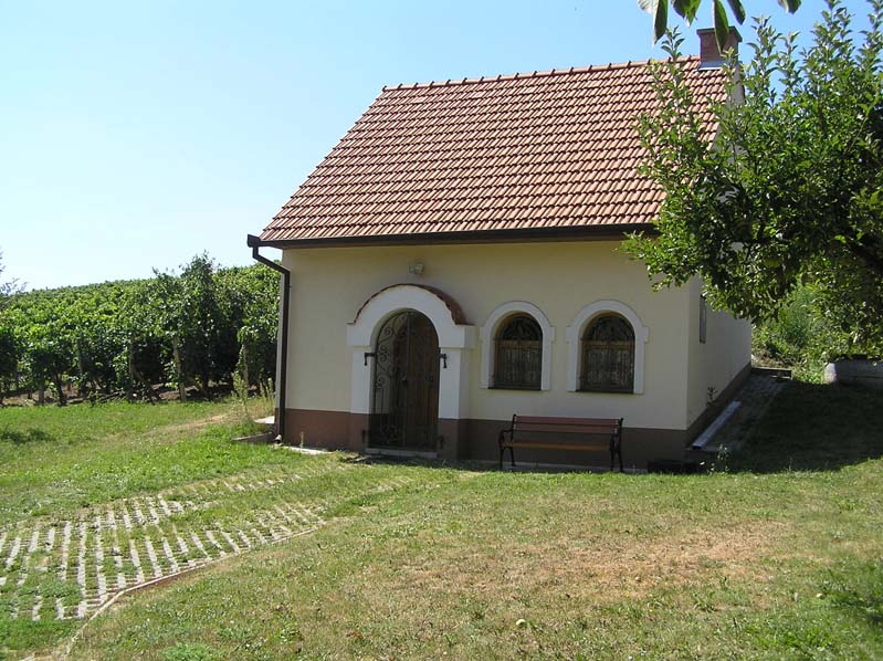Domek winiarski w winnicy w Čejču