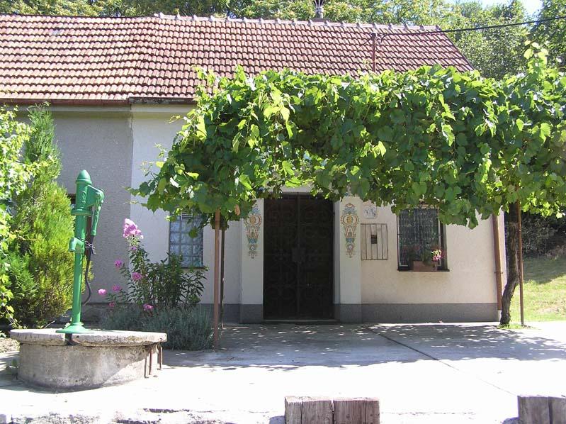 Piwniczka win w Čejču