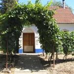 Domek winiarski w Čejču