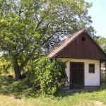 Stary domek winiarski w Čejču
