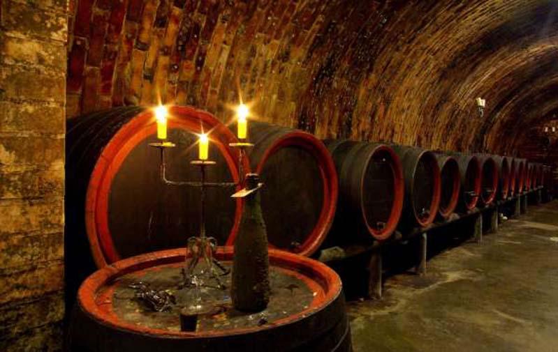 Piwnica win - Winiarstwo Dufek - Svatobořice-Mistřín