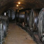 Piwnica win - Winiarstwo Židek, Popice
