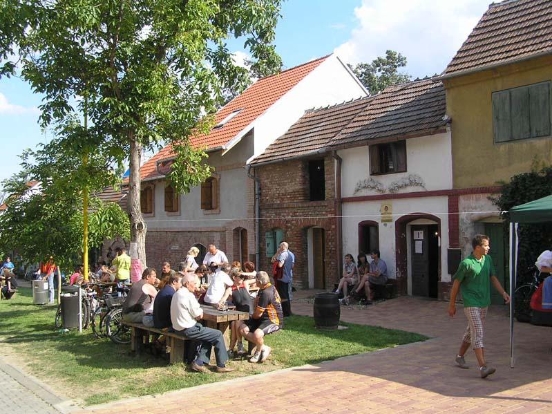 Otwarte piwnice win - Morawska Nowa Wieś