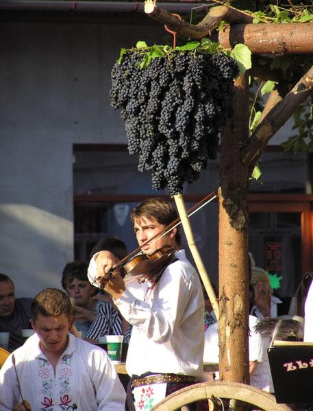 Z morawskiego winobrania