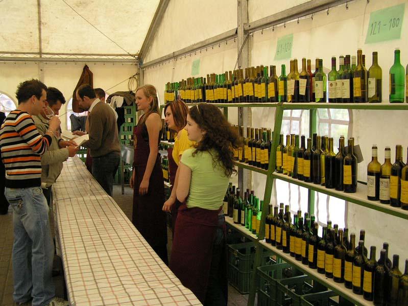 Degustacja win na rynku w Morawskiej Nowej Wsi