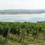 Winnice nad Pavlovem i Zbiorniki Nowomlyńskie