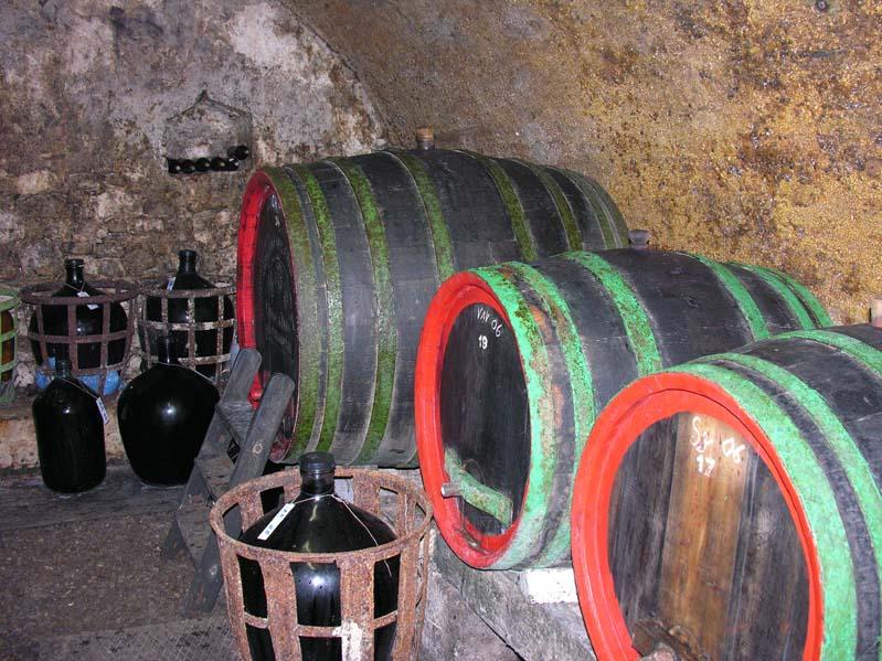Tradycyjna piwnica win w Zaječí - winiarz Kadlec