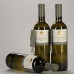 Winiarstwo SONBERK - Popice