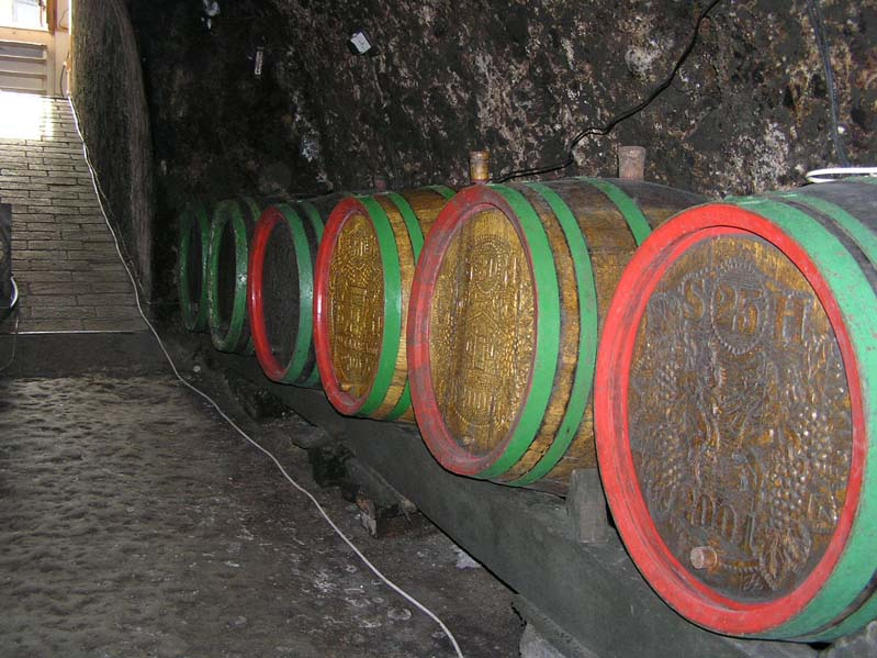 Piwnica win w Nechorach