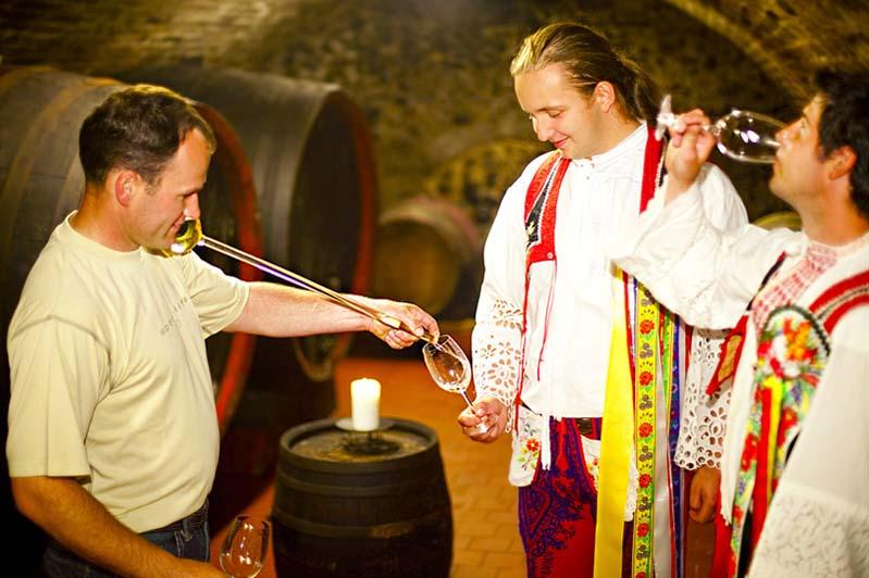 Koszt wina w piwniczce w Březí