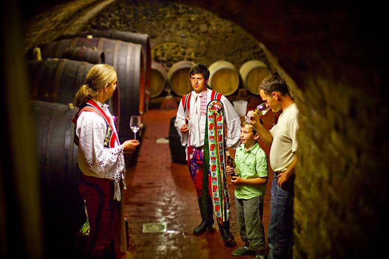 W morawskiej piwniczce win - Březí - subregion mikulovski
