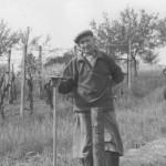 Stary winiarz w Boleradicach