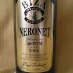Biza-Neronet04-jak1